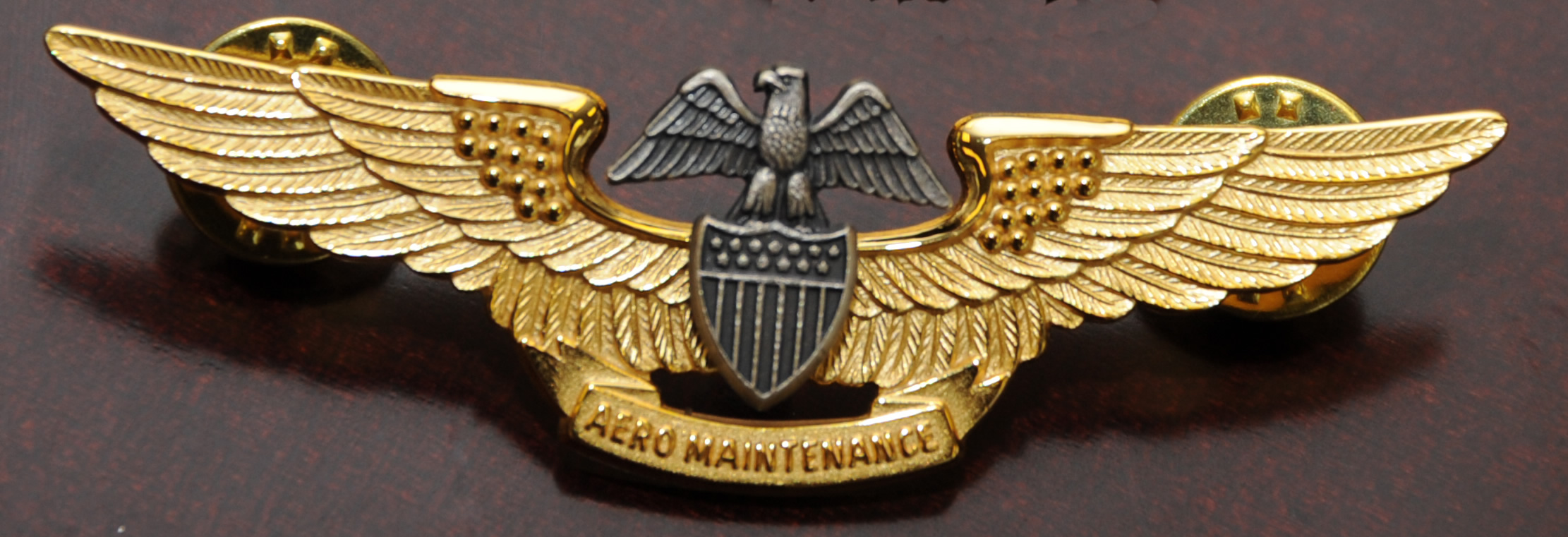 File Professional Aviation Maintenance Officer Insignia