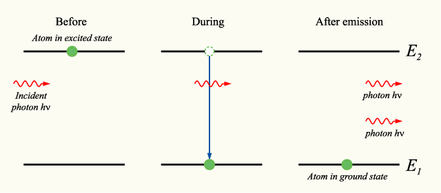 "Stimulated emission (in which photons ""clone"" themselves) was predicted by Einstein in his kinetic analysis, and led to the development of the laser. Einstein's derivation inspired further developments in the quantum treatment of light, which led to the statistical interpretation of quantum mechanics. Stimulatedemission.png"