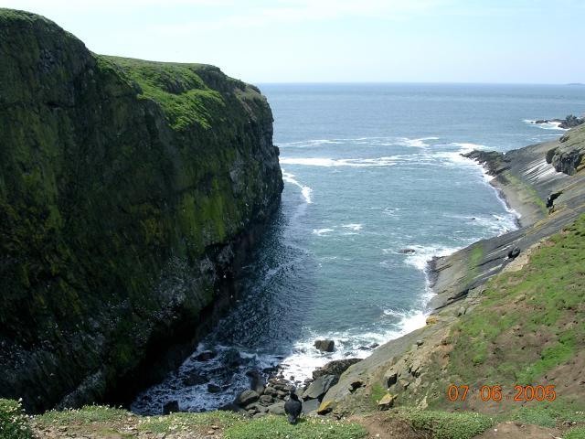 The Wick, Skomer Island - geograph.org.uk - 58959