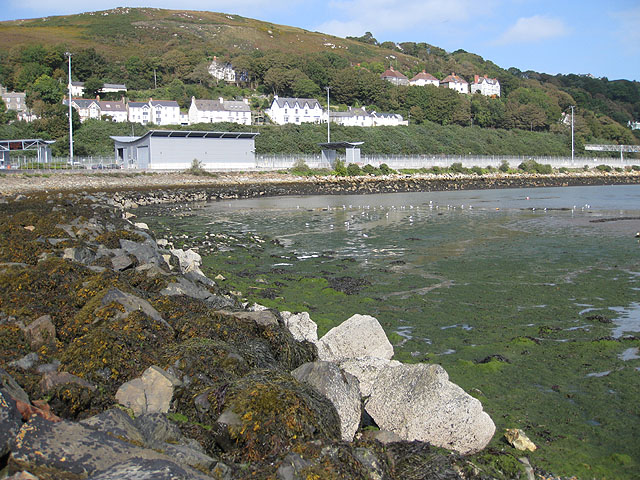 Tide out, birds in, Fishguard harbour - geograph.org.uk - 1531701