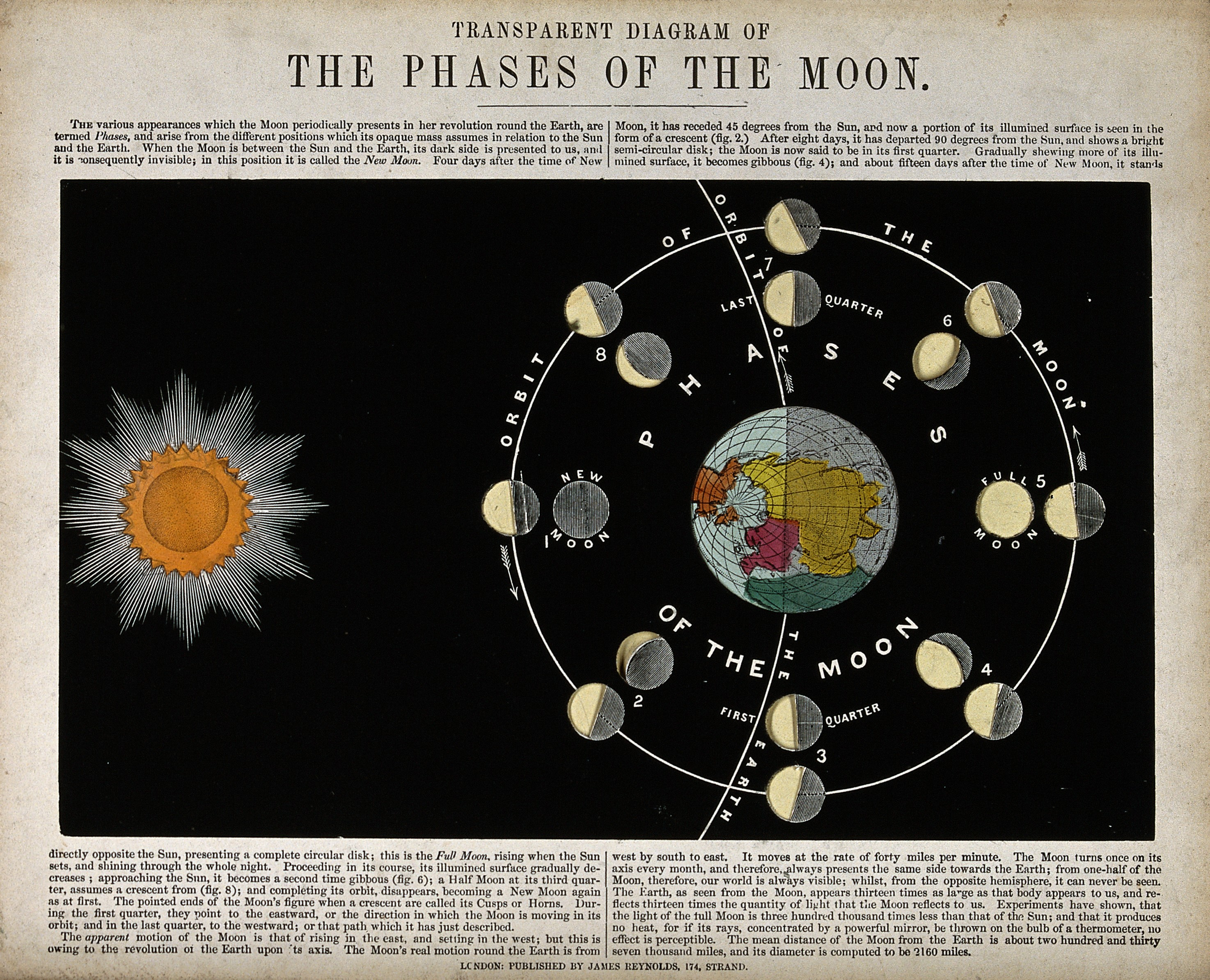 elusive 'black moon' to grace the sky on friday : treehugger  month diagram astronomy