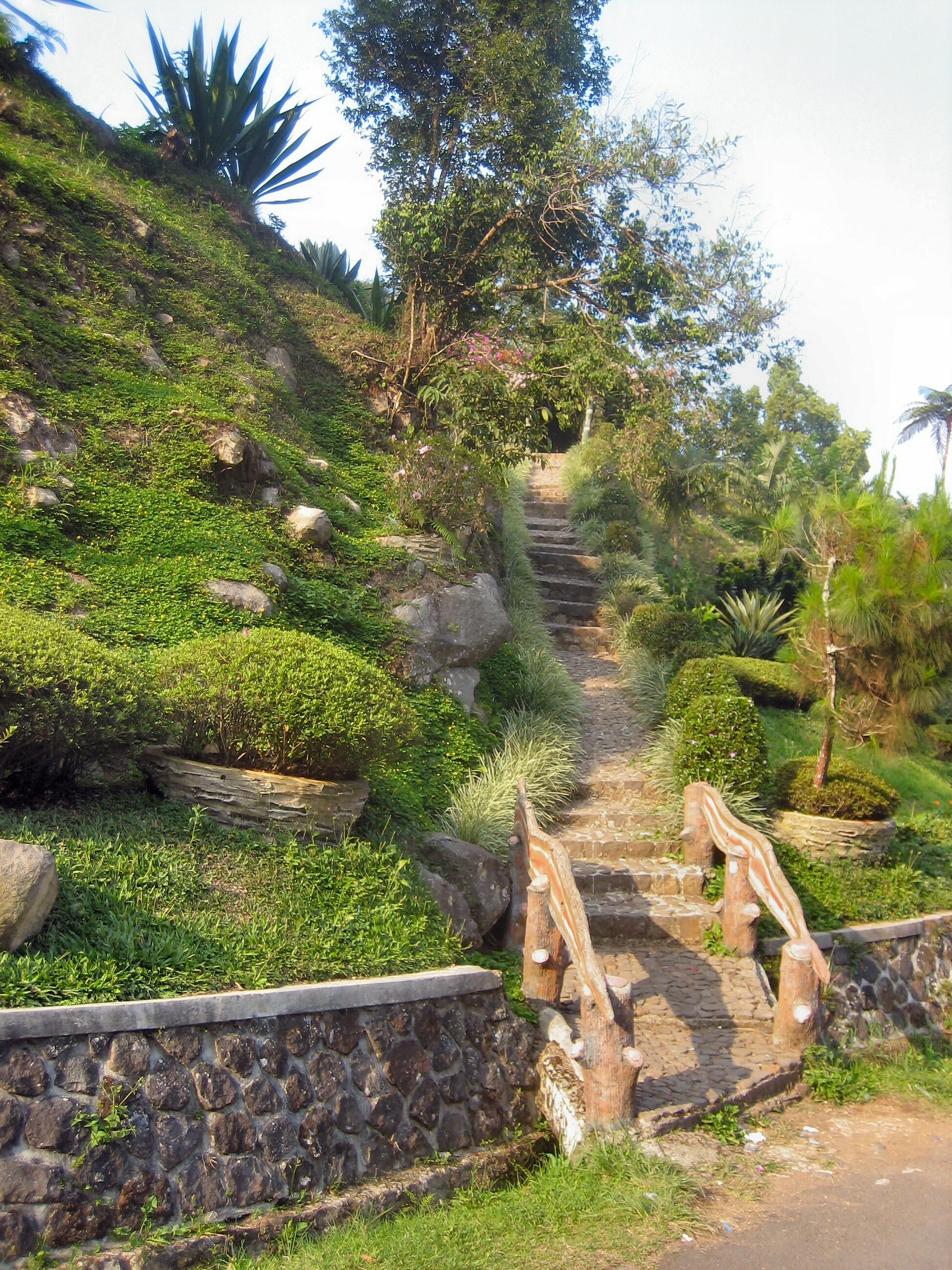 Jalan setapak di Kebun Raya Ci Bodas