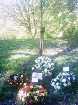Chorley workers memorial tree