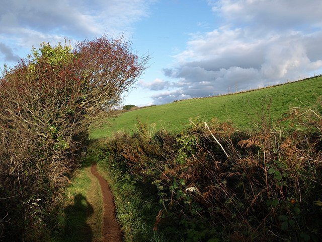 Coast path on Staddon Heights - geograph.org.uk - 1580391