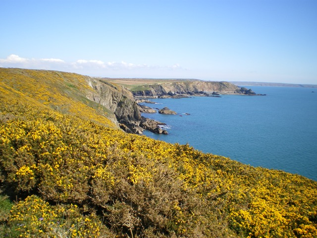 Coastal scenery to the east of Carreg y Barcud - geograph.org.uk - 1255217