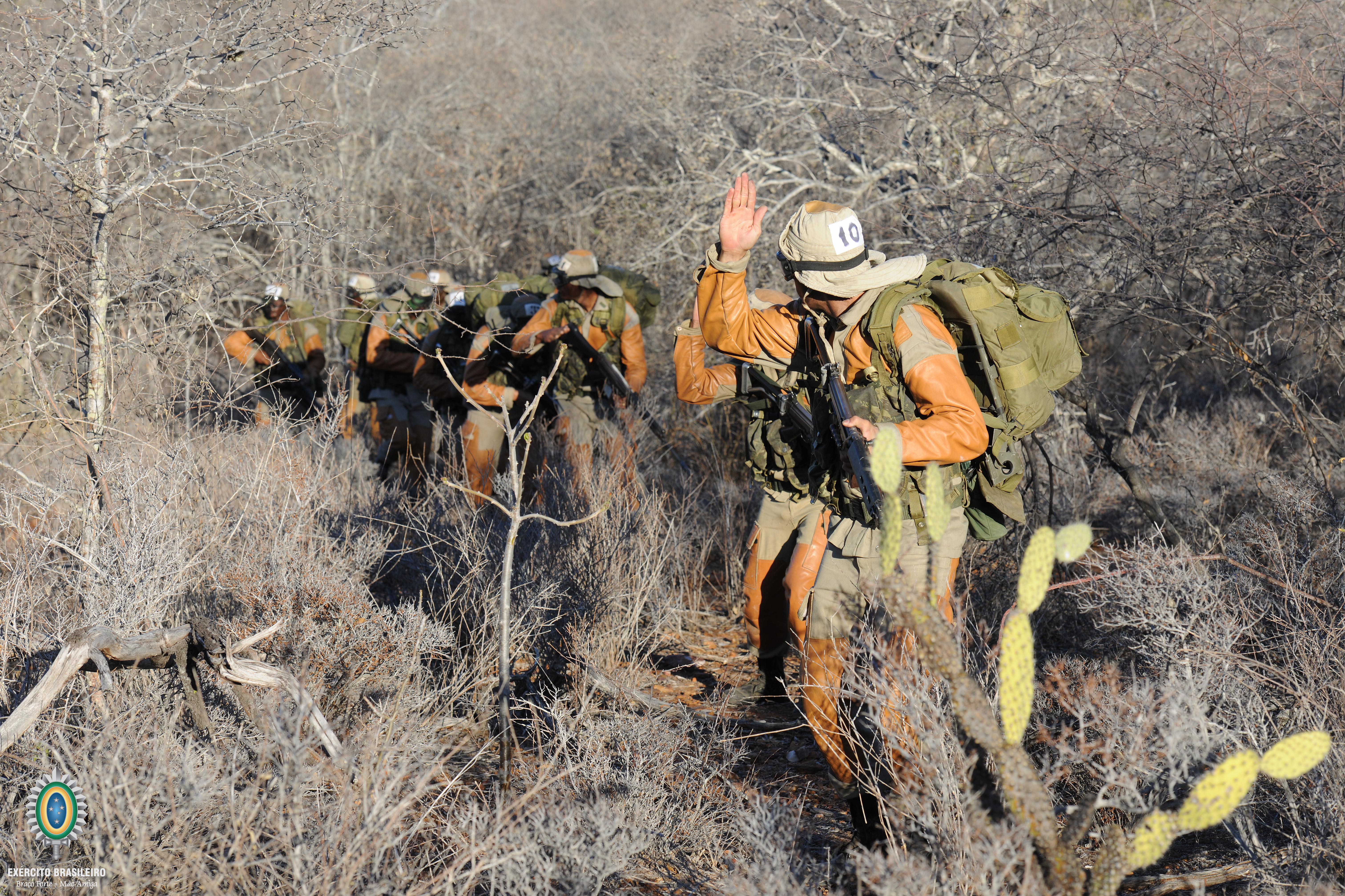 Combatente_da_Caatinga_(26427352440).jpg