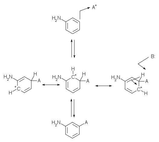 resonance structures for meta attack of an electrophile on aniline