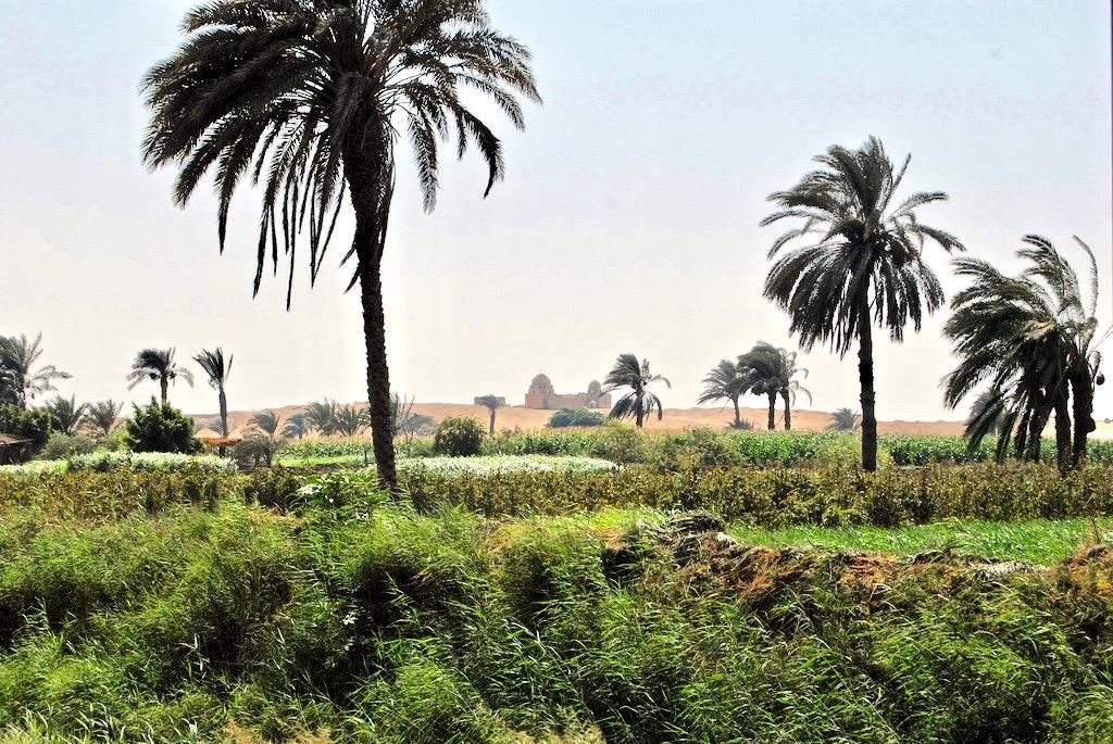 SEX AGENCY in Qasr Farafra