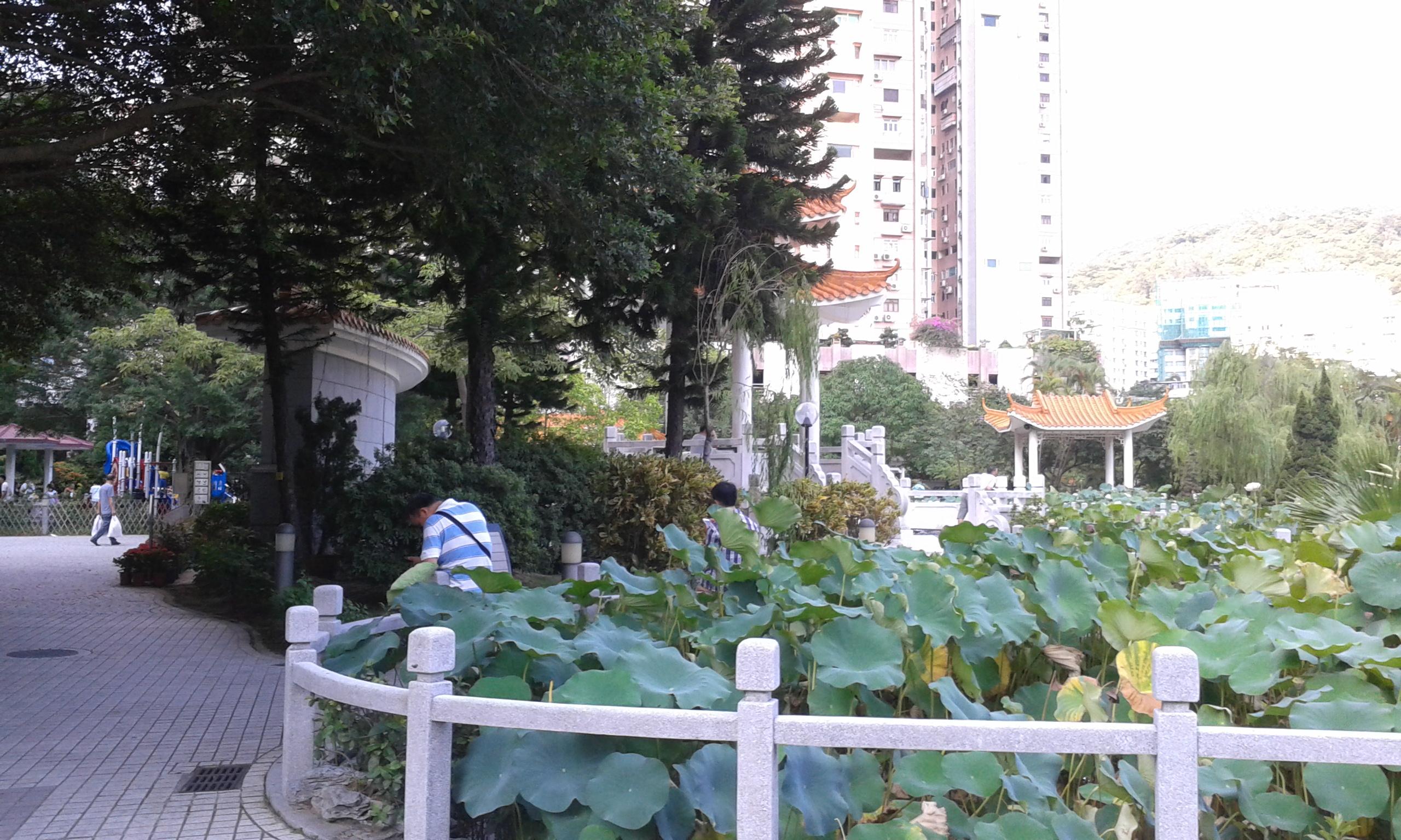 Flower City Park.jpg