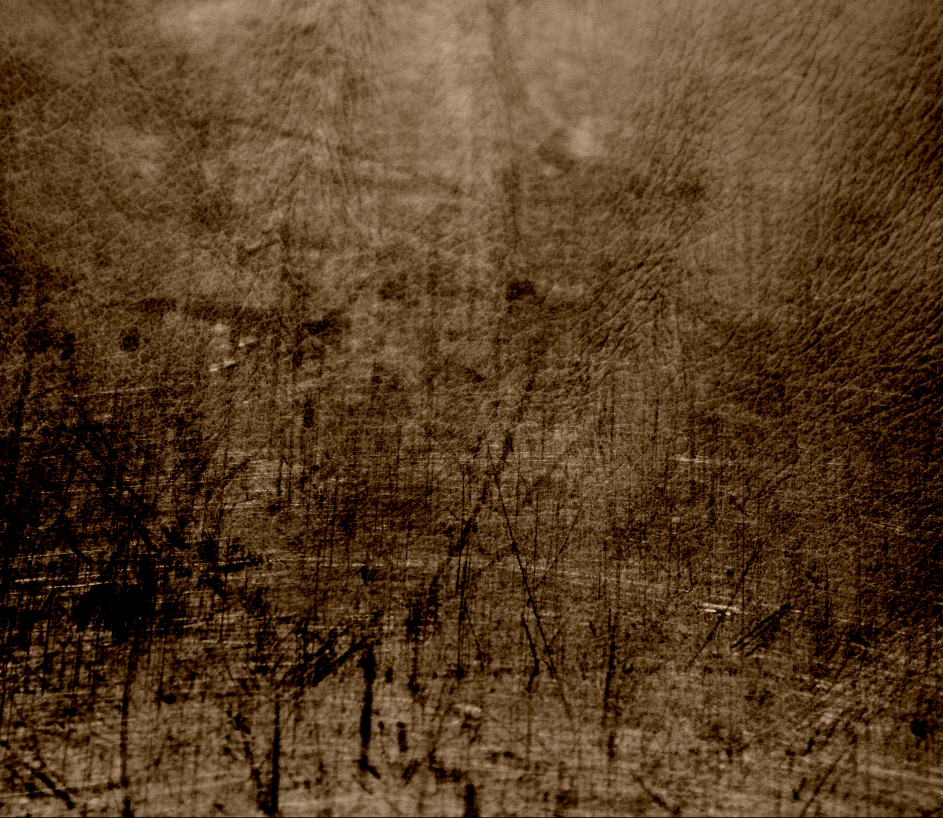 FileFree Dirty Distressed Scratched Leather Texture For Layers Creative Commons 3005071597