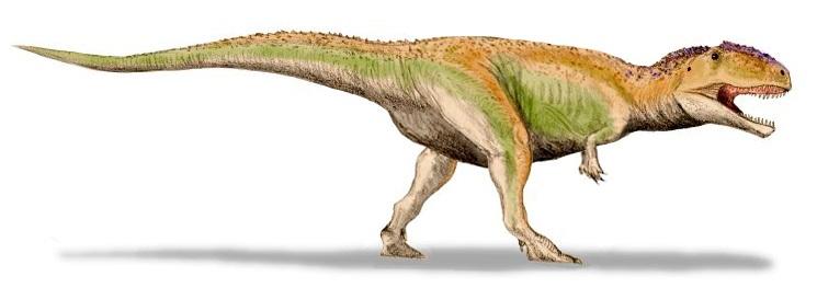 Giganotosaurus BW