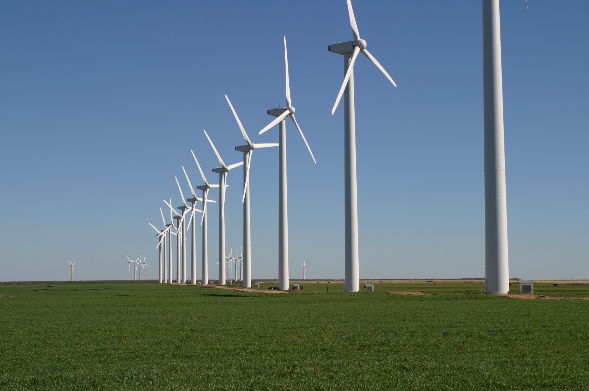 Texas Wind Farm- Courtesy Wikipedia Commons