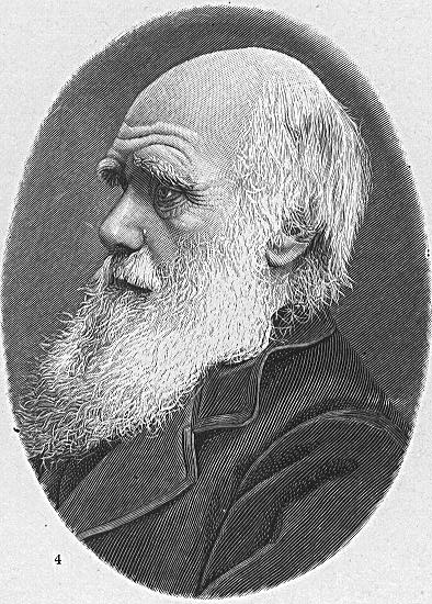 https://upload.wikimedia.org/wikipedia/commons/8/8b/Hw-darwin.jpg