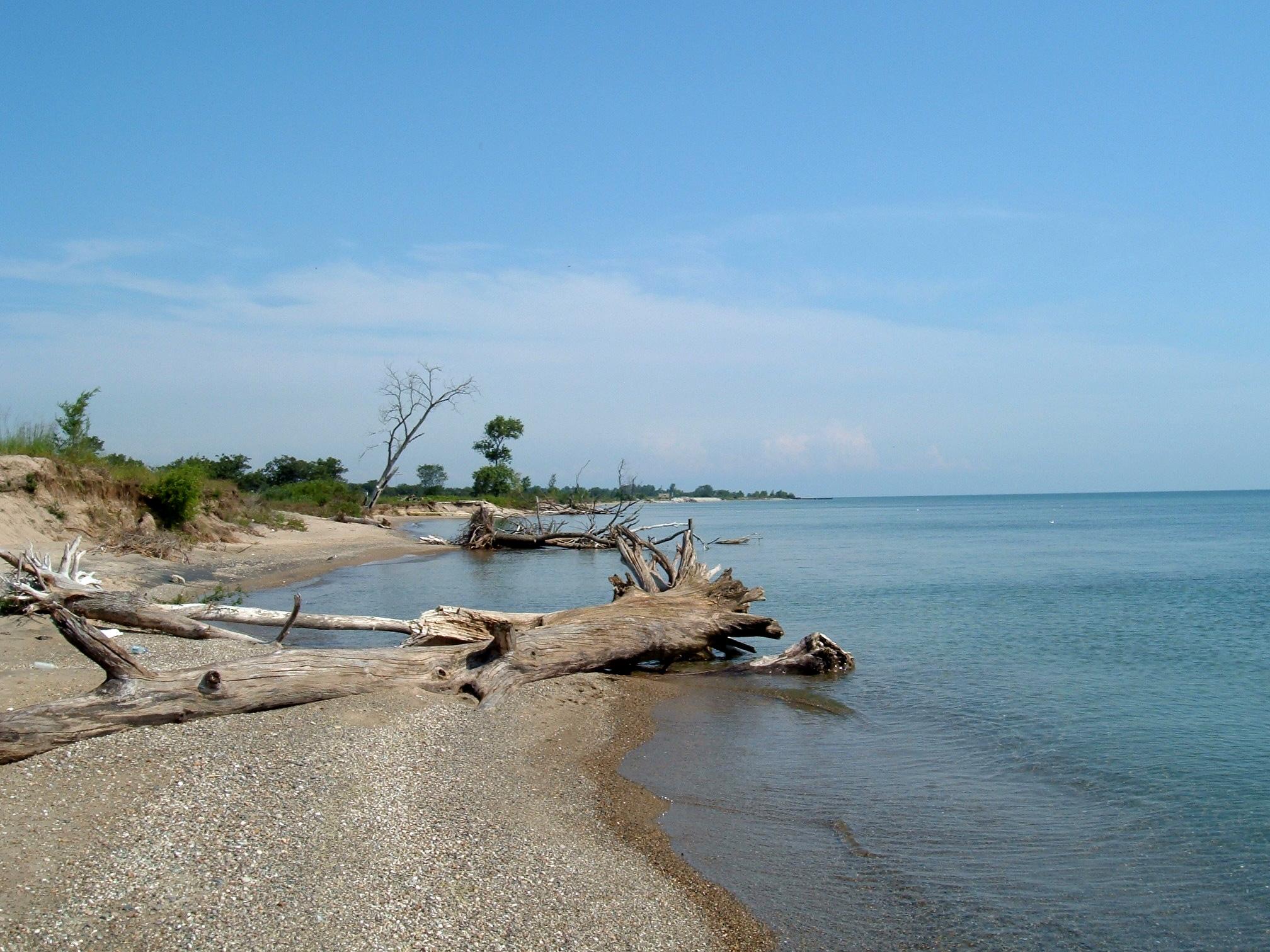 Illinois Wolf Park Illinois Beach State Park