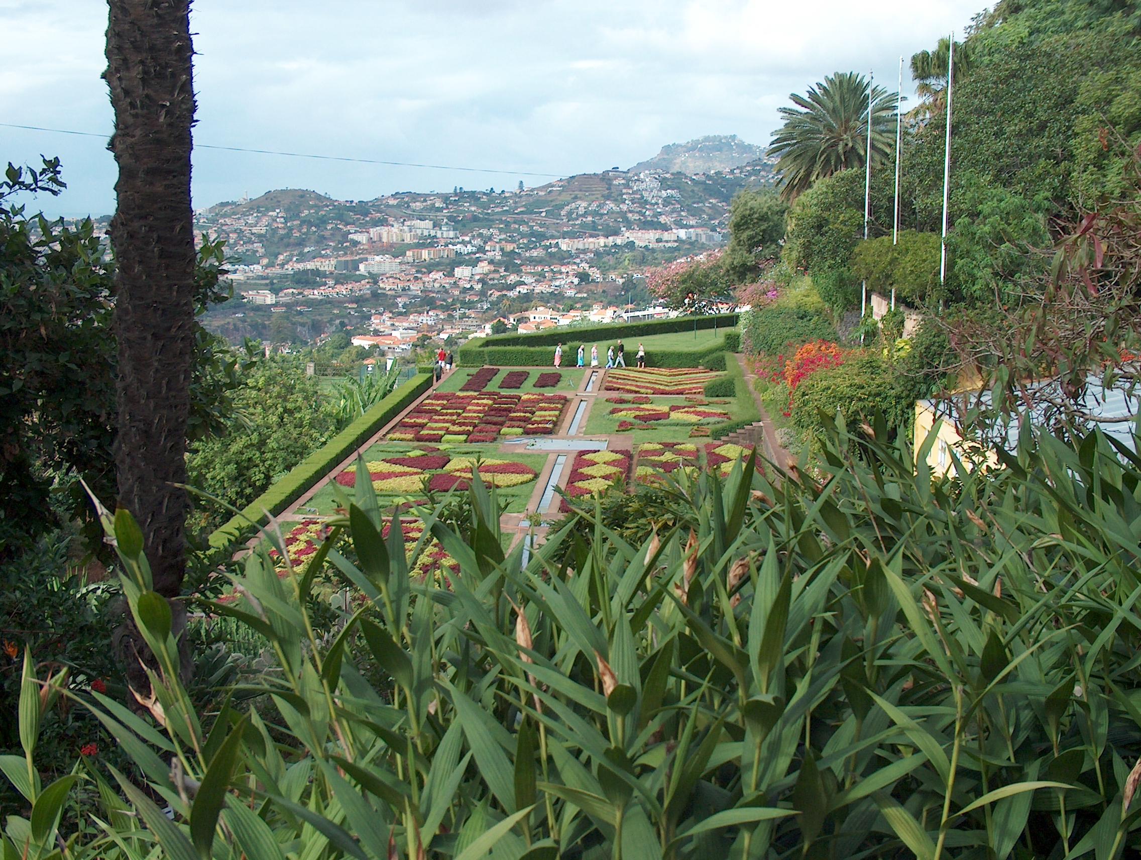 Madeiran kasvitieteellinen puutarha