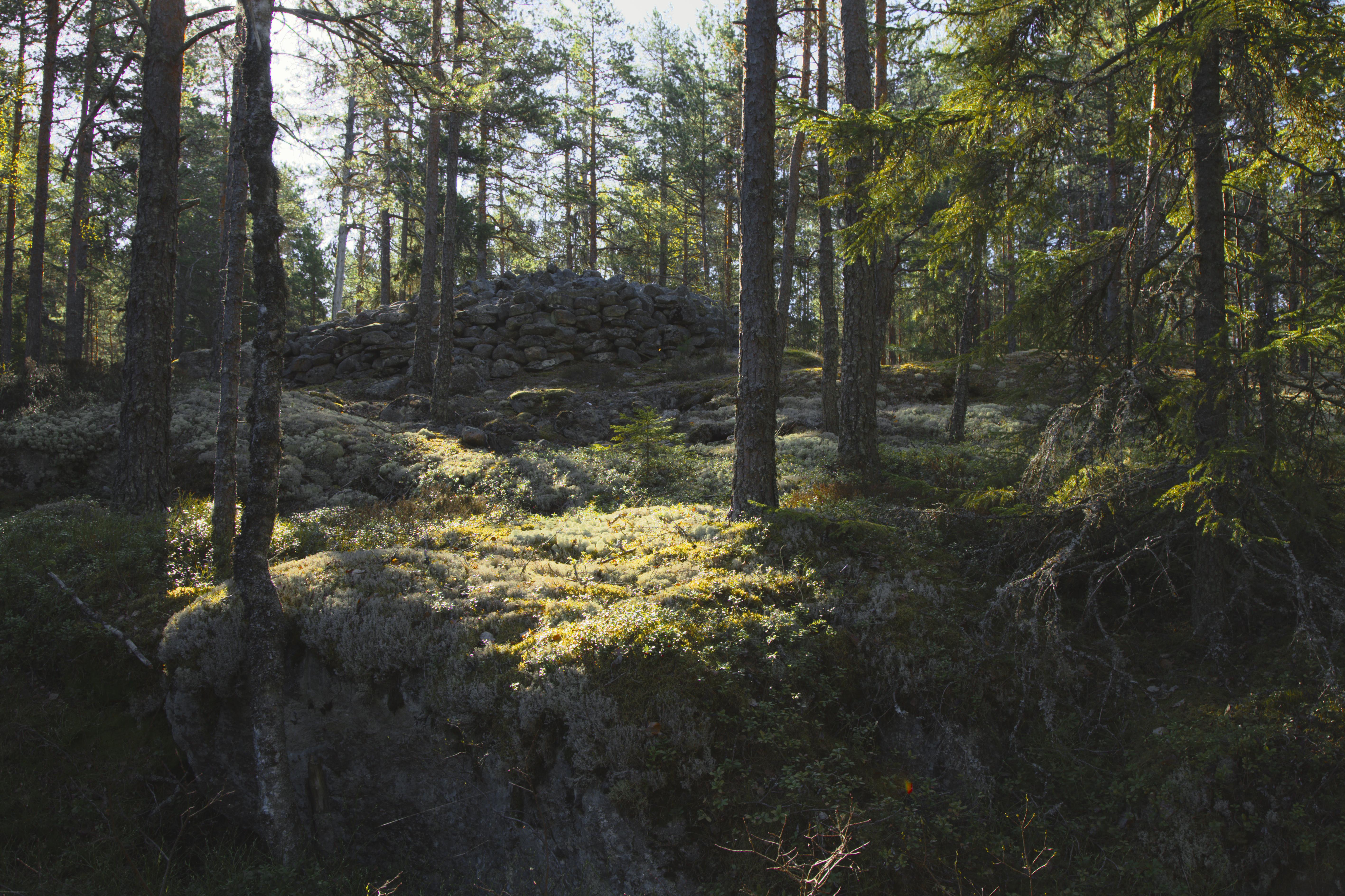 Kylmäkorvenkallion pronssikautinen hautaröykkiö 08.jpg