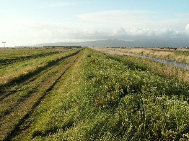 File:Leri embankment, Borth - geograph.org.uk - 15104.jpg