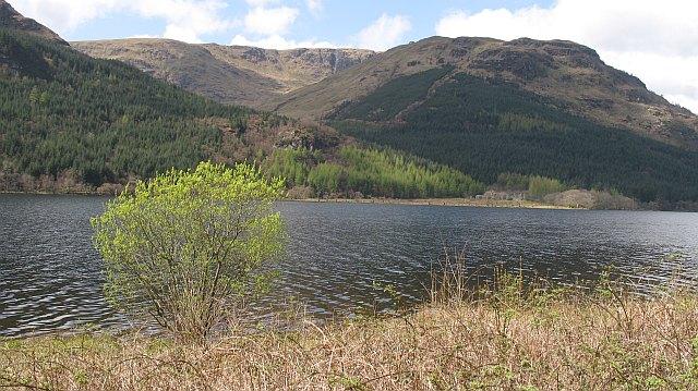 Loch Eck - geograph.org.uk - 1040615