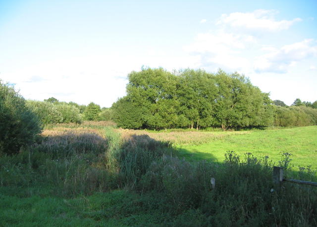 Marshland adjacent to Cocked Hat - geograph.org.uk - 234881