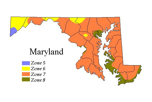 Mdusdamap Baltimore County Zoning Map on