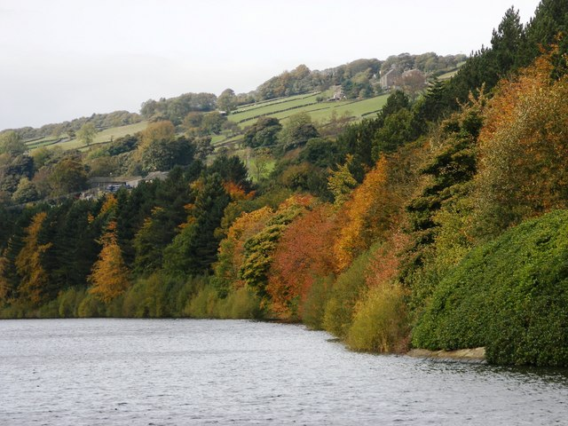 More Hall Reservoir, autumn colours - geograph.org.uk - 1012643