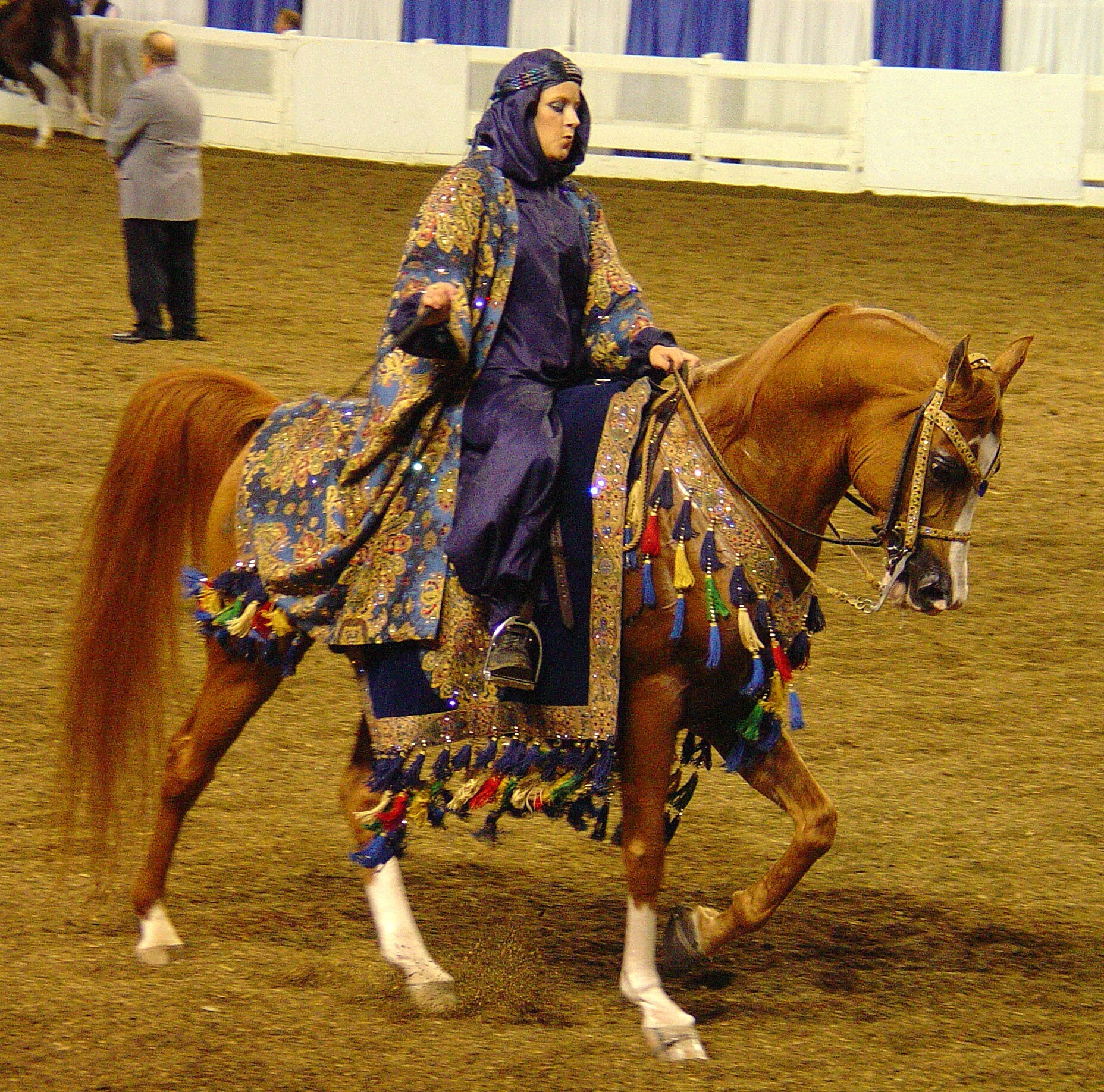 Arabian Horse Costume | Car Interior Design