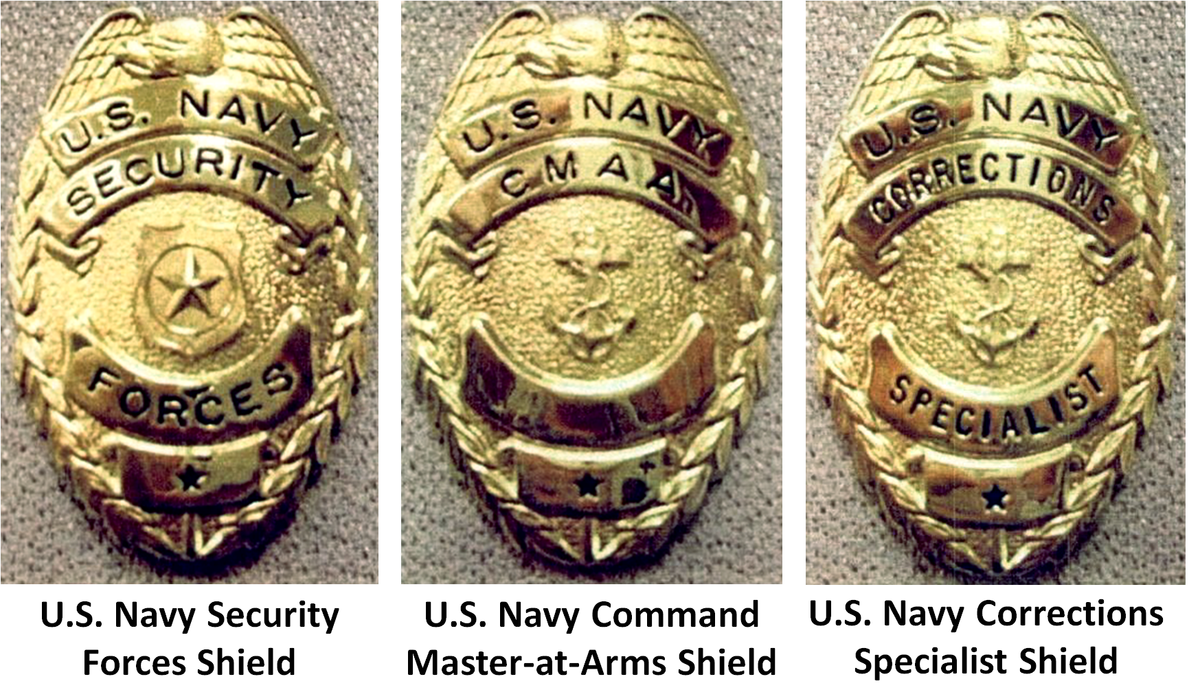 an introduction to the history of law enforcement in the united states Attorney general supervises the administration of all law enforcement operations of the department represents the united states in legal matters as its chief attorney furnishes legal advice and opinions to the president, the cabinet, and the.