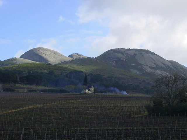 Paarlberg - Wikipedia