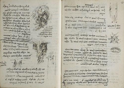 Da Vinci notebooks pages