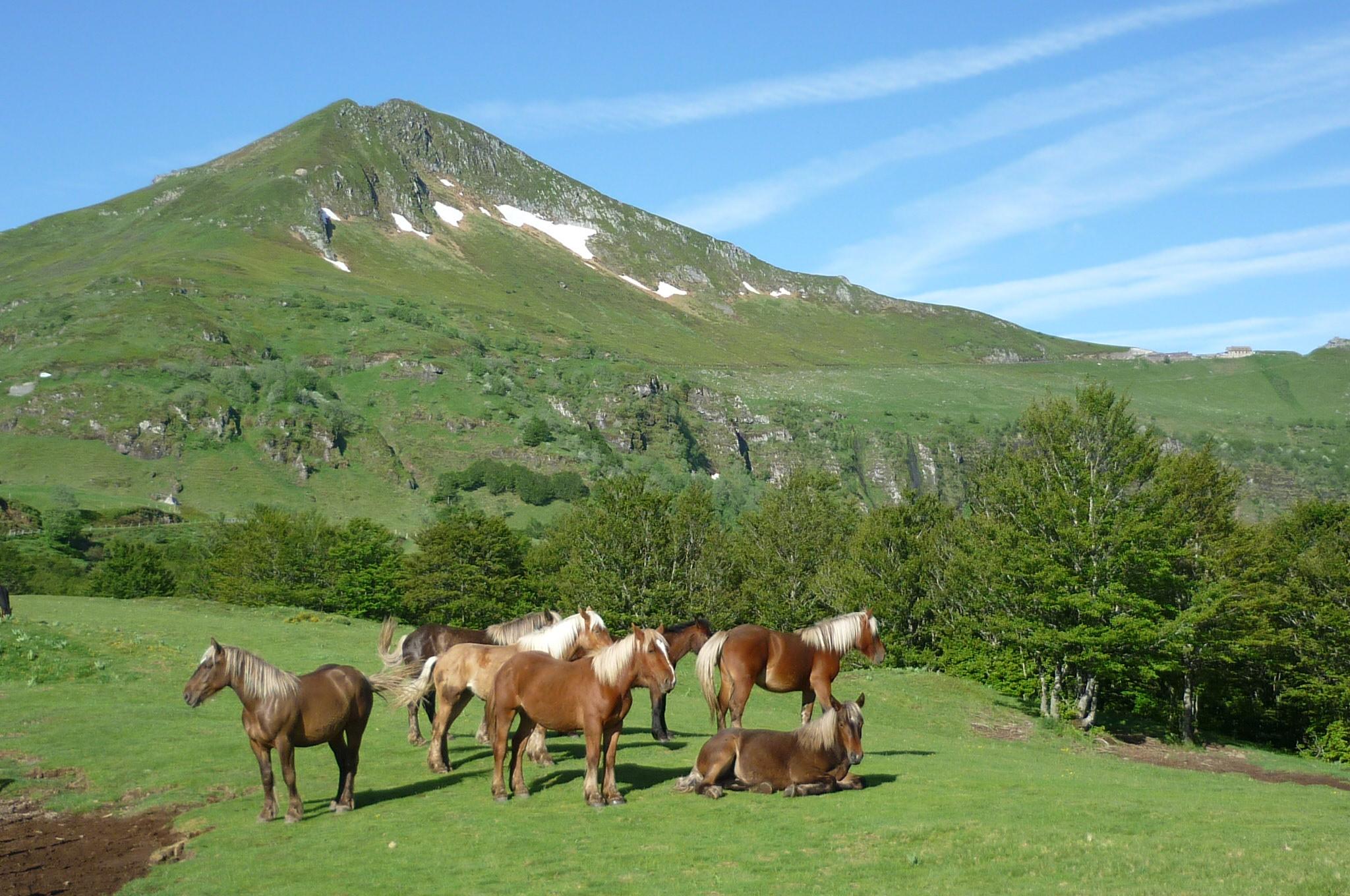 Tourisme dans le Cantal Wikiwand