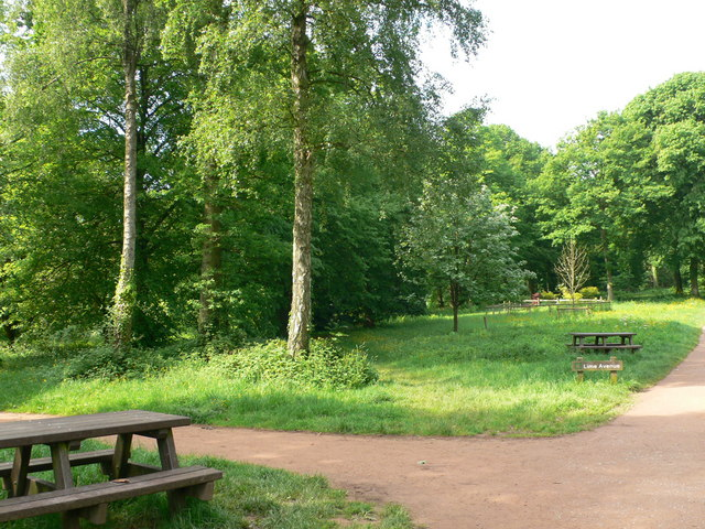 Queenswood Country Park - geograph.org.uk - 834334