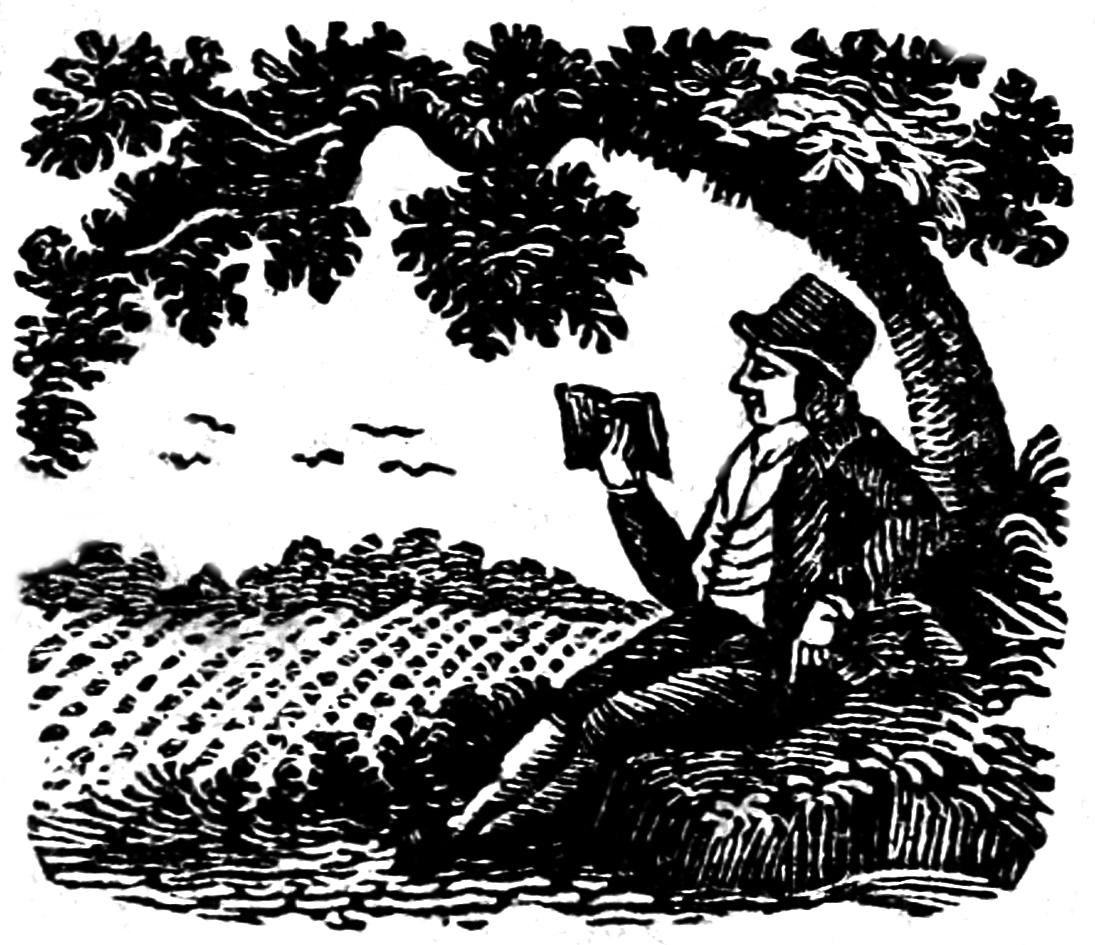 Illustratie van een man die aandachtig een boek leest.