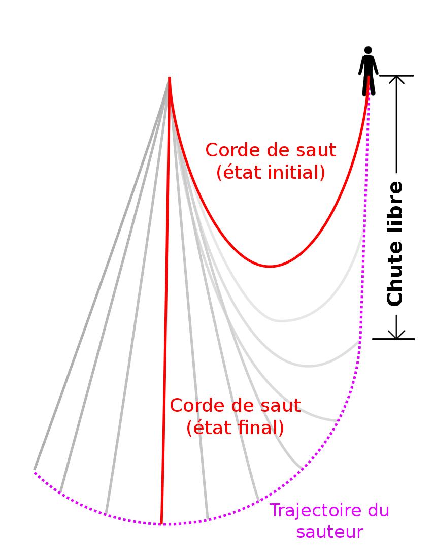 Saut Sur Corde Wikip 233 Dia