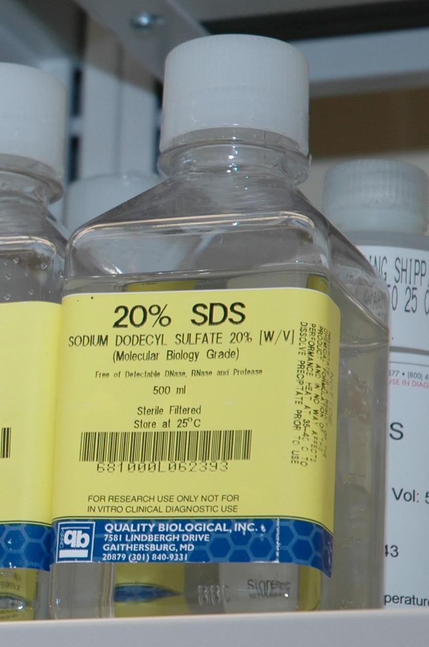 sodium dodecyl sulfate msds pdf