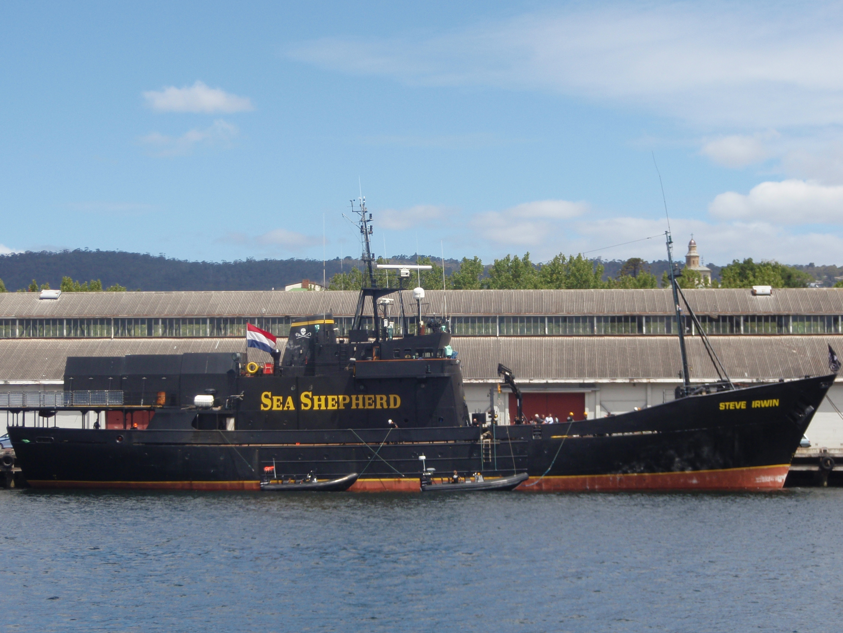 File:Steve Irwin docked in Hobart.JPG - Wikipedia, the free ...
