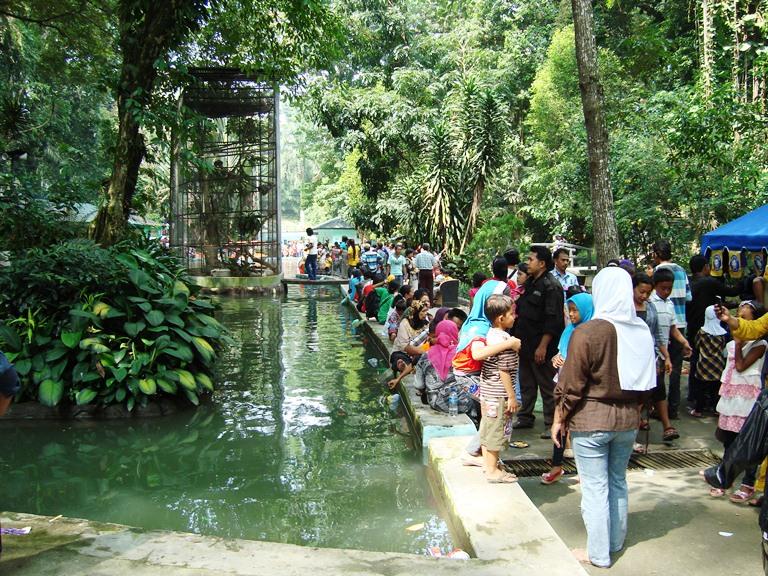 File Taman Hewan Pematang Siantar 4 Jpg Wikimedia Commons