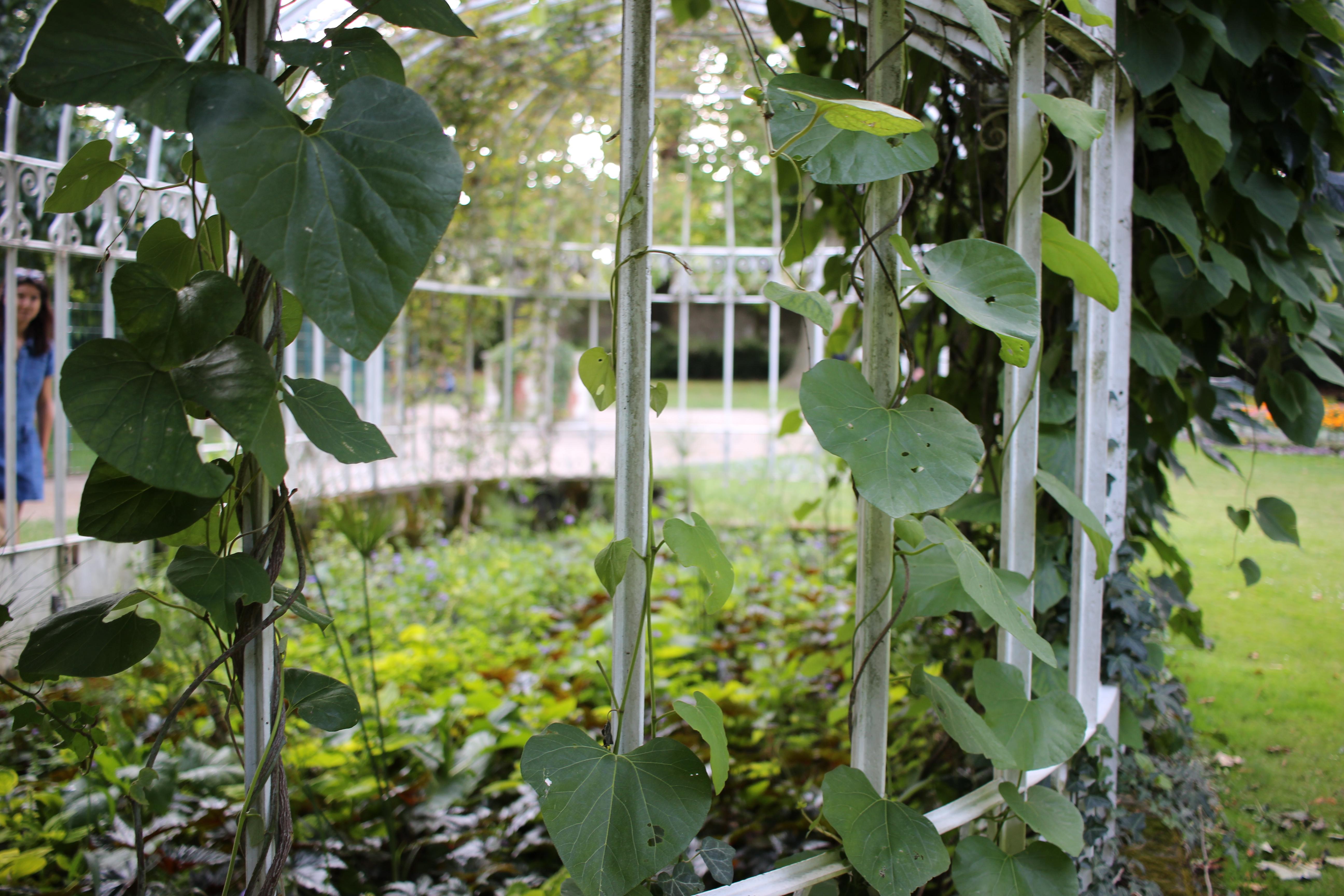 filetours paysage jardin botanique 14jpg - Jardin Botanique De Tours