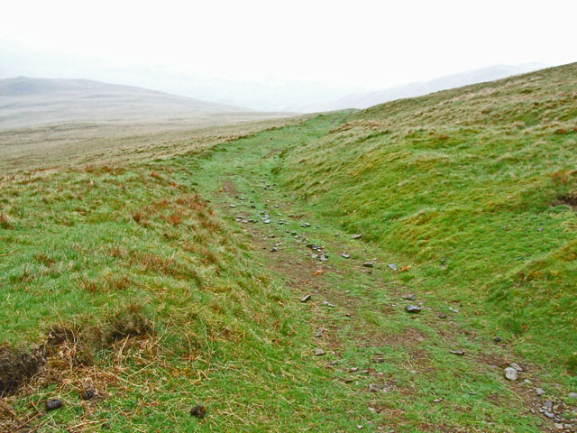 Track on the slopes of Arant Haw - geograph.org.uk - 168587