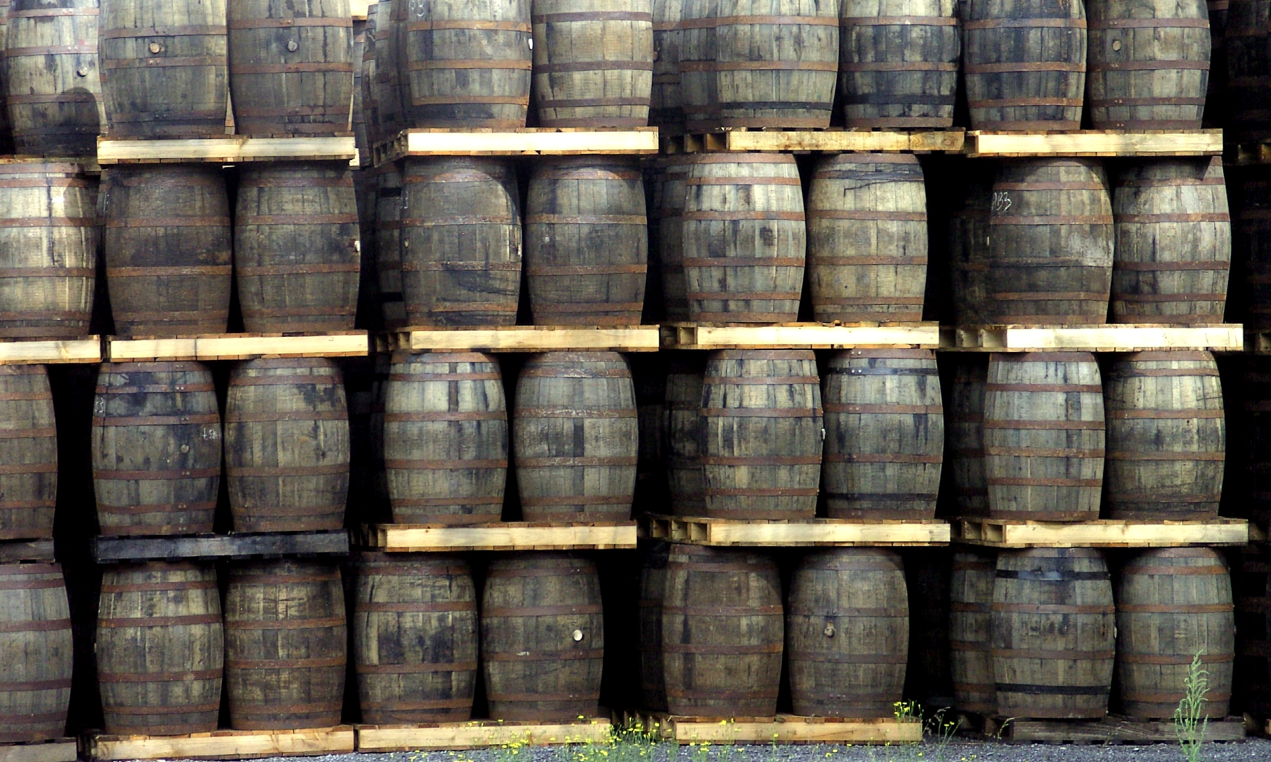 Collection Whisky Barrels