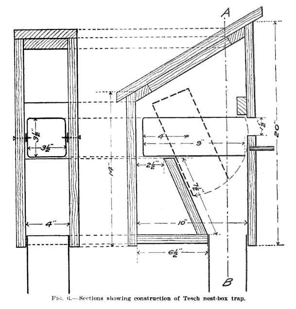 19th century knowledge traps and snares tesch nest box trap.PNG