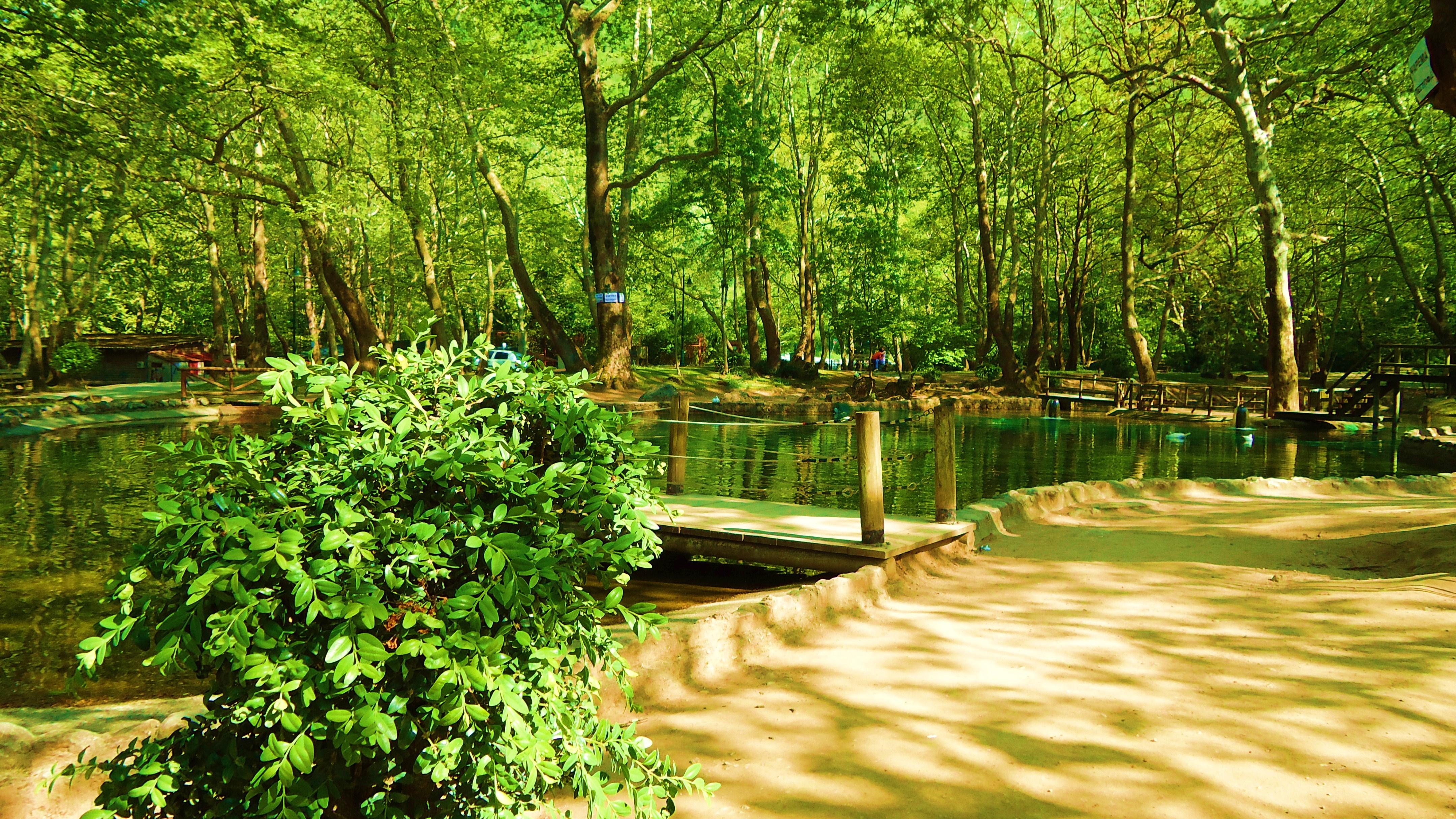 File:Agios Nikolaos Park, Naousa.jpg - Wikimedia Commons