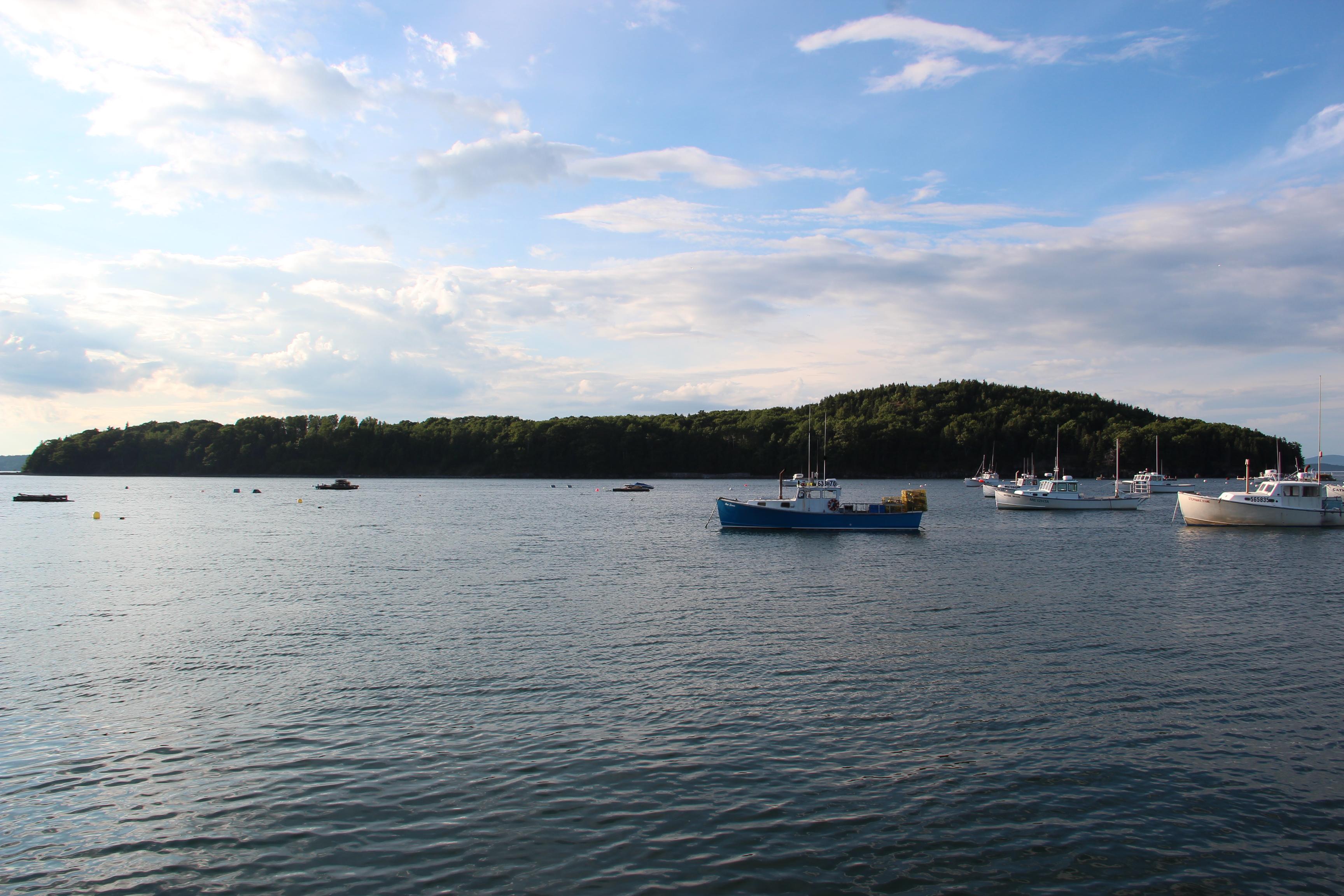 Bar Island, Maine.JPG