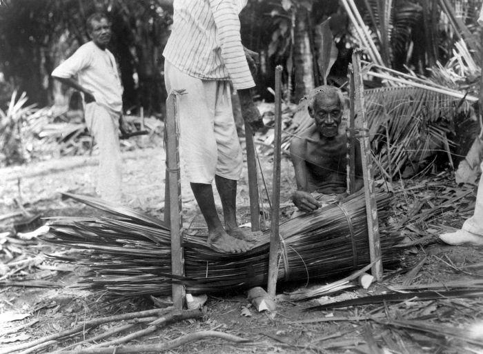 Pembantaian Di Selandia Baru Wikipedia: Wikipedia Bahasa Indonesia, Ensiklopedia Bebas