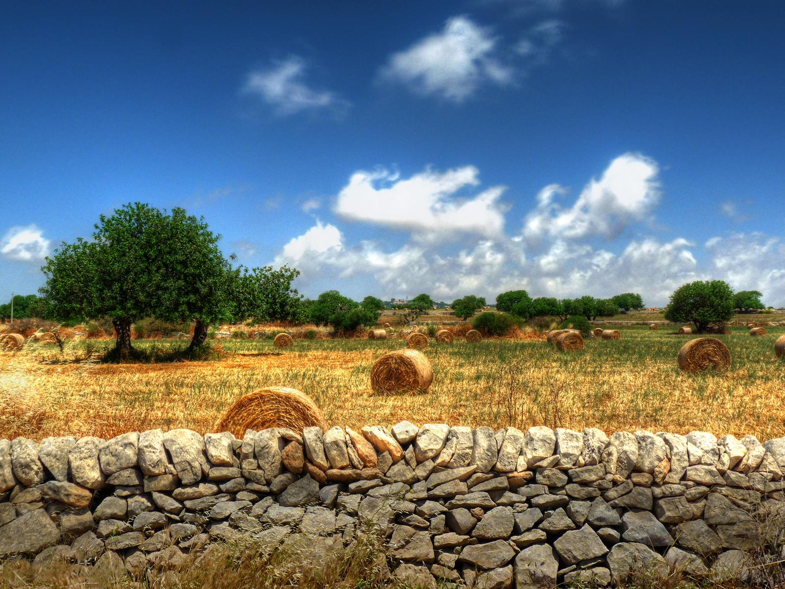 campagna ragusa sicilia