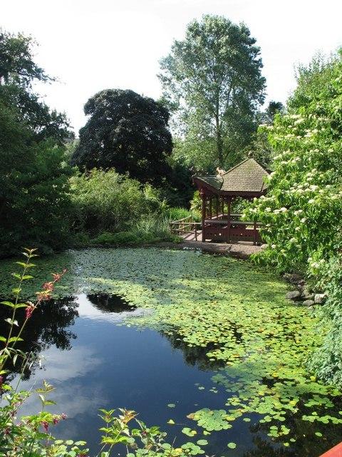 File Chinese Hillside Royal Botanic Garden Edinburgh