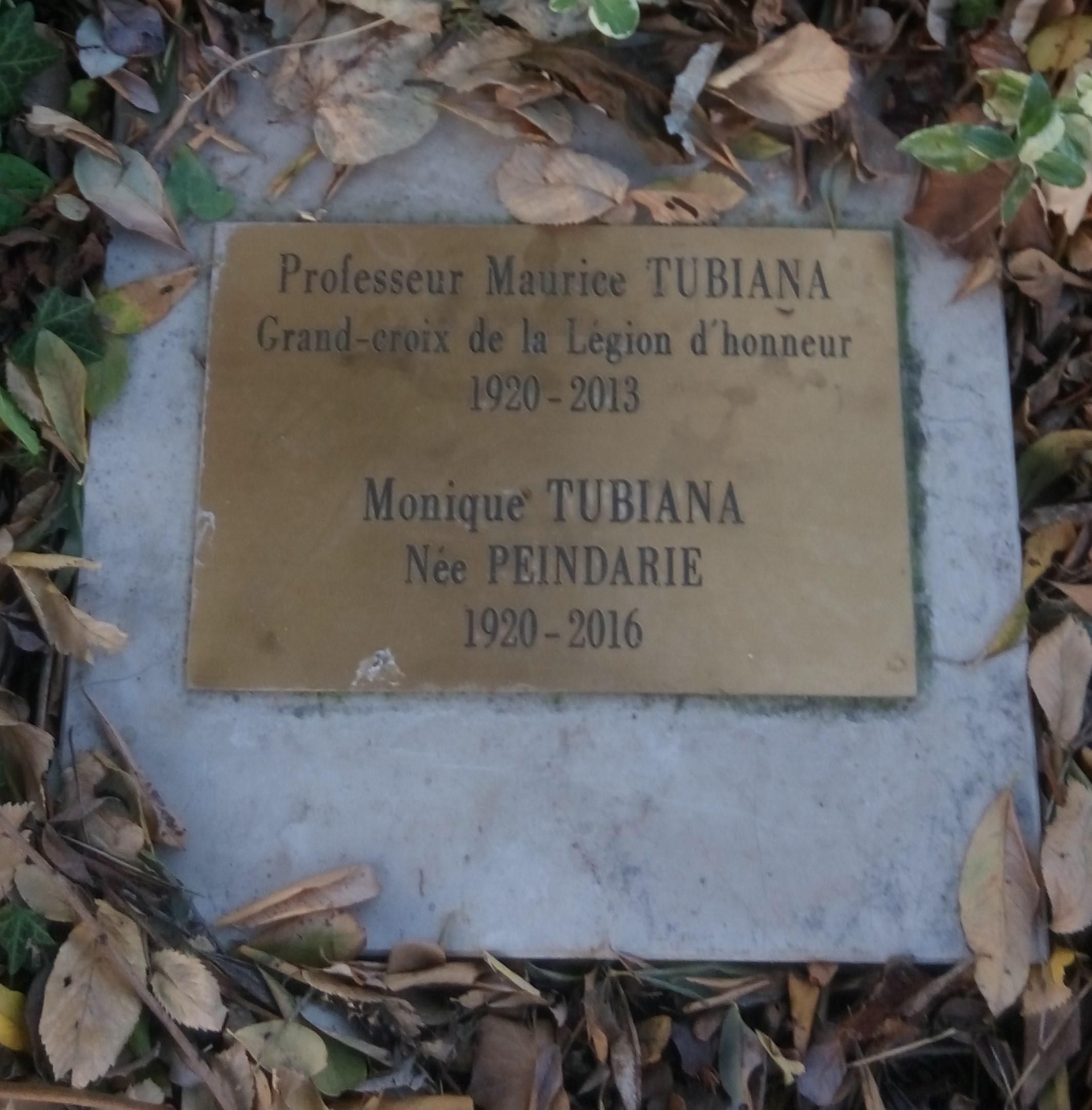 File Cimeti¨re du Montparnasse Maurice Tubiana jardin du