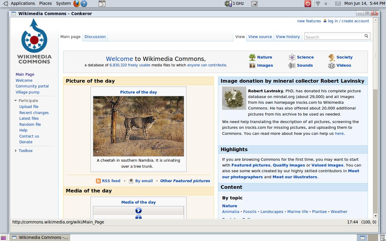 Conkeror - Wikipedia