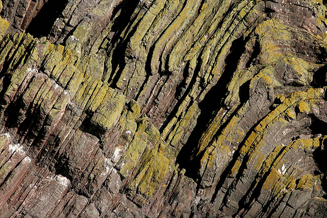 Folded_rock_strata_at_Hurker%27s_Haven_-_geograph.org.uk_-_1533937.jpg