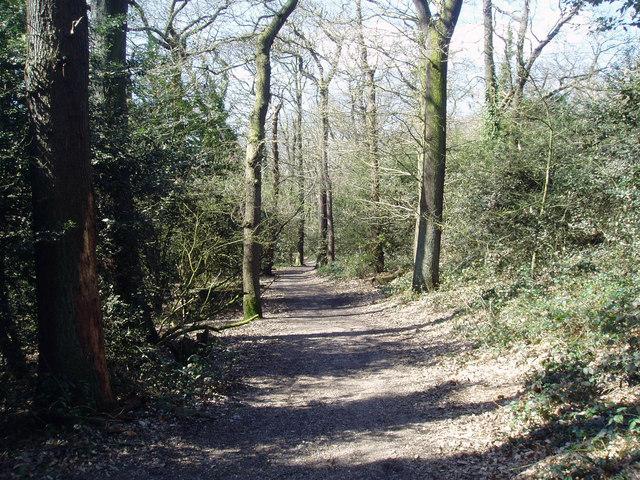 Green Chain Walk in Bostall Woods - geograph.org.uk - 871634