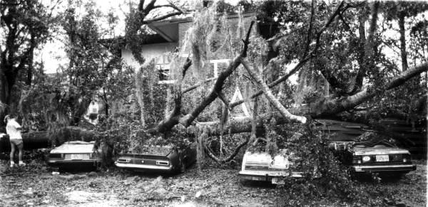 Hurricane Kate damaged cars Tallahassee, Florida.jpg